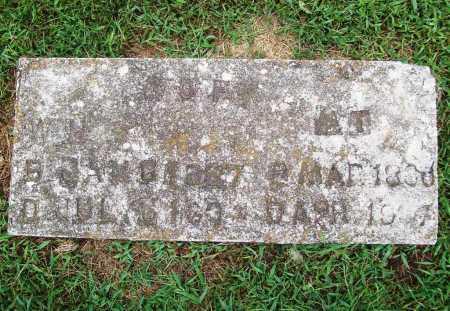 GOFF, W. H. - Benton County, Arkansas | W. H. GOFF - Arkansas Gravestone Photos