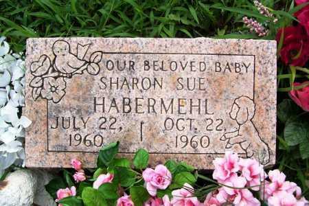 HABERMEHL, SHARON SUE - Benton County, Arkansas   SHARON SUE HABERMEHL - Arkansas Gravestone Photos