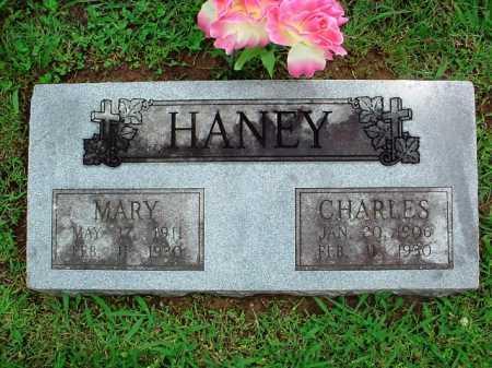 HANEY, MARY - Benton County, Arkansas | MARY HANEY - Arkansas Gravestone Photos