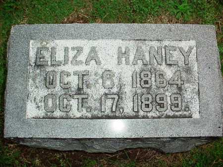HANEY, ELIZA - Benton County, Arkansas | ELIZA HANEY - Arkansas Gravestone Photos