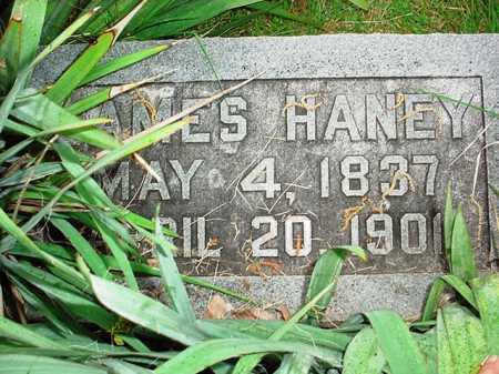 HANEY, JAMES - Benton County, Arkansas | JAMES HANEY - Arkansas Gravestone Photos