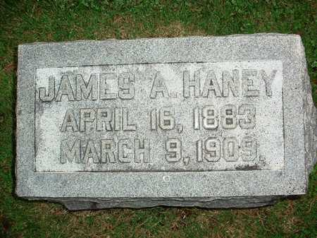 HANEY, JAMES A. - Benton County, Arkansas | JAMES A. HANEY - Arkansas Gravestone Photos