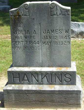 ALEXANDER HANKINS, JULIA ANN - Benton County, Arkansas | JULIA ANN ALEXANDER HANKINS - Arkansas Gravestone Photos