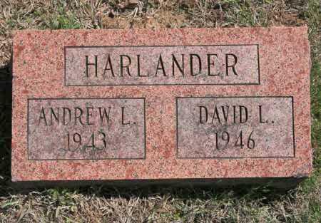 HARLANDER, DAVID L - Benton County, Arkansas | DAVID L HARLANDER - Arkansas Gravestone Photos