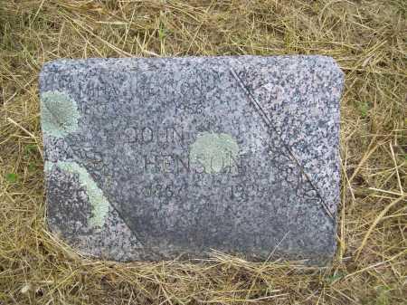 HENSON, MINA - Benton County, Arkansas | MINA HENSON - Arkansas Gravestone Photos