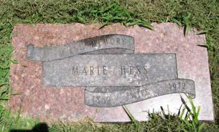 HESS, MARIE - Benton County, Arkansas | MARIE HESS - Arkansas Gravestone Photos