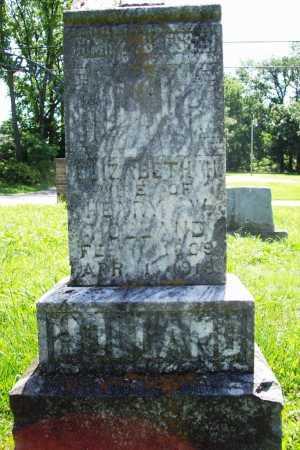 HOLLAND, ELIZABETH H - Benton County, Arkansas | ELIZABETH H HOLLAND - Arkansas Gravestone Photos