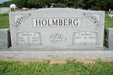 HOLMBERG, FRIDOLF A. - Benton County, Arkansas | FRIDOLF A. HOLMBERG - Arkansas Gravestone Photos