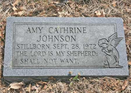 JOHNSON, AMY CATHERINE - Benton County, Arkansas | AMY CATHERINE JOHNSON - Arkansas Gravestone Photos