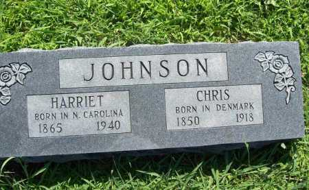 JOHNSON, CHRIS - Benton County, Arkansas | CHRIS JOHNSON - Arkansas Gravestone Photos