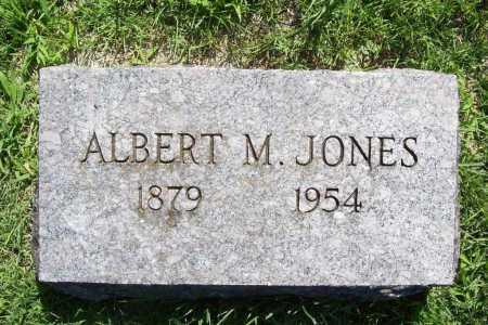 JONES, ALBERT M. - Benton County, Arkansas | ALBERT M. JONES - Arkansas Gravestone Photos