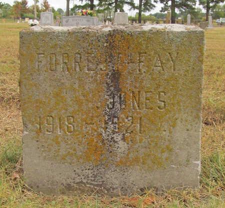 JONES, FORREST FAY - Benton County, Arkansas | FORREST FAY JONES - Arkansas Gravestone Photos
