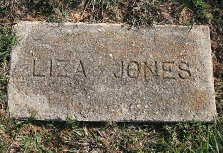 JONES, LIZA - Benton County, Arkansas | LIZA JONES - Arkansas Gravestone Photos