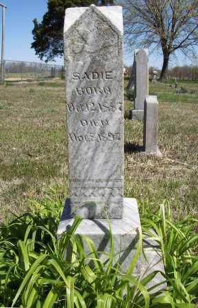 JONES, SADIE - Benton County, Arkansas | SADIE JONES - Arkansas Gravestone Photos