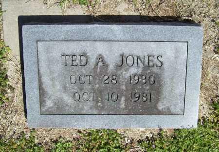 JONES, TED A. - Benton County, Arkansas   TED A. JONES - Arkansas Gravestone Photos