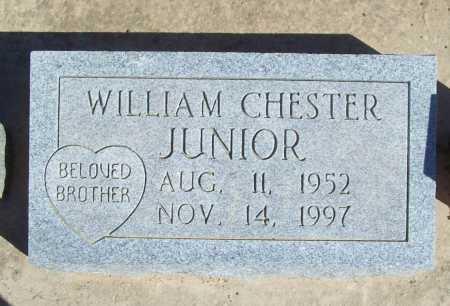 JUNIOR, WILLIAM CHESTER - Benton County, Arkansas | WILLIAM CHESTER JUNIOR - Arkansas Gravestone Photos