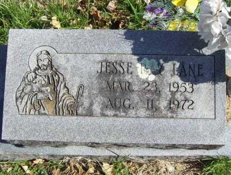 LANE, JESSE RAY - Benton County, Arkansas | JESSE RAY LANE - Arkansas Gravestone Photos