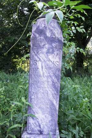 LANGLEY, MARTHA EMELINE - Benton County, Arkansas | MARTHA EMELINE LANGLEY - Arkansas Gravestone Photos