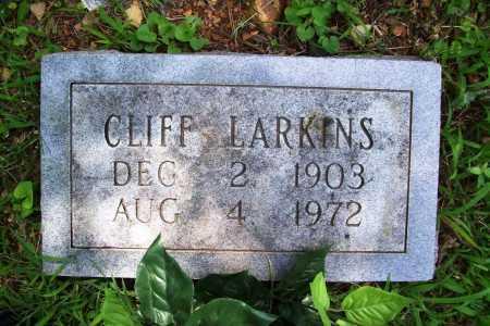 LARKINS, CLIFF - Benton County, Arkansas | CLIFF LARKINS - Arkansas Gravestone Photos