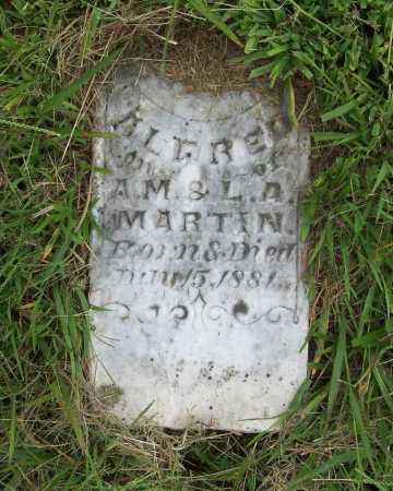 MARTIN, ALFRED - Benton County, Arkansas   ALFRED MARTIN - Arkansas Gravestone Photos