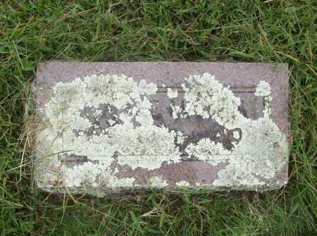 MARTIN, IVA LEE - Benton County, Arkansas | IVA LEE MARTIN - Arkansas Gravestone Photos