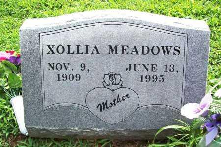 MEADOWS, XOLLIA - Benton County, Arkansas | XOLLIA MEADOWS - Arkansas Gravestone Photos