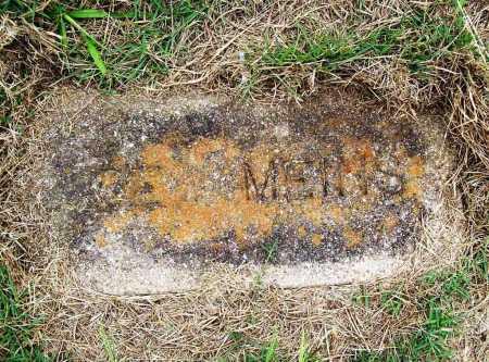 MEINS, JOE - Benton County, Arkansas | JOE MEINS - Arkansas Gravestone Photos