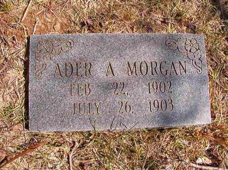 MORGAN, ADER A. - Benton County, Arkansas | ADER A. MORGAN - Arkansas Gravestone Photos