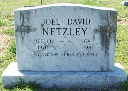 NETZLEY, JOEL DAVID - Benton County, Arkansas   JOEL DAVID NETZLEY - Arkansas Gravestone Photos