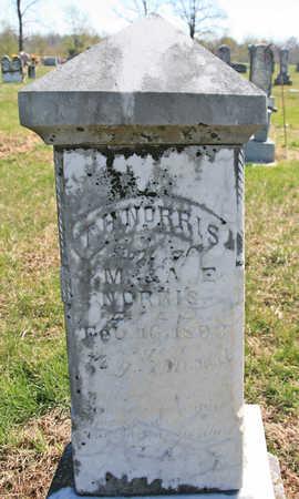 NORRIS, T H - Benton County, Arkansas | T H NORRIS - Arkansas Gravestone Photos