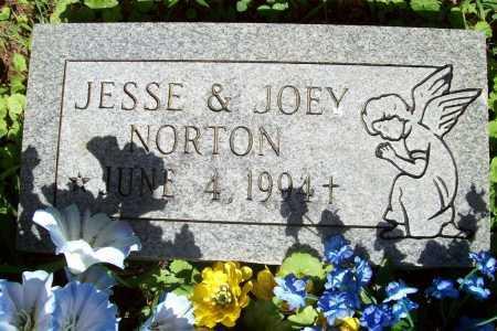 NORTON, JESSE - Benton County, Arkansas | JESSE NORTON - Arkansas Gravestone Photos