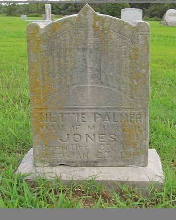 PALMER, NETTIE - Benton County, Arkansas | NETTIE PALMER - Arkansas Gravestone Photos