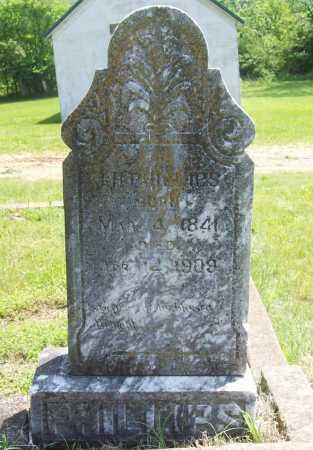 PHILLIPS, J. H. - Benton County, Arkansas | J. H. PHILLIPS - Arkansas Gravestone Photos