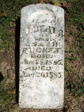 PUCKETT, ALBERT R. - Benton County, Arkansas   ALBERT R. PUCKETT - Arkansas Gravestone Photos