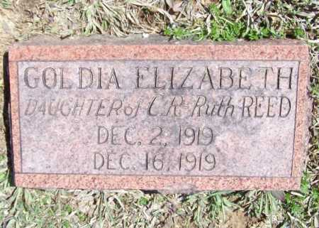 REED, GOLDIA ELIZABETH - Benton County, Arkansas | GOLDIA ELIZABETH REED - Arkansas Gravestone Photos