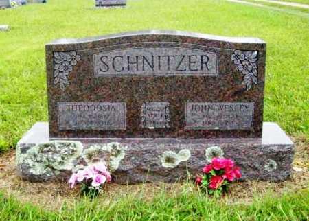 SCHNITZER, THEODOSHIA - Benton County, Arkansas | THEODOSHIA SCHNITZER - Arkansas Gravestone Photos
