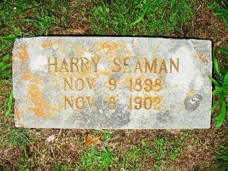 SEAMAN, HARRY - Benton County, Arkansas | HARRY SEAMAN - Arkansas Gravestone Photos