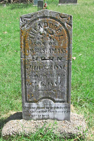 SEAMANS, THEODORE L - Benton County, Arkansas | THEODORE L SEAMANS - Arkansas Gravestone Photos