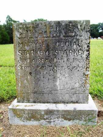 STARKEY, CECIAL - Benton County, Arkansas | CECIAL STARKEY - Arkansas Gravestone Photos