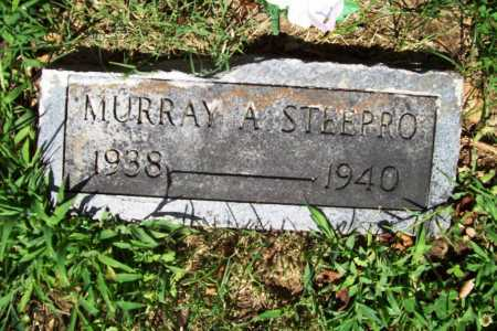 STEEPRO, MURRAY ALFRED (ORIGINAL) - Benton County, Arkansas   MURRAY ALFRED (ORIGINAL) STEEPRO - Arkansas Gravestone Photos