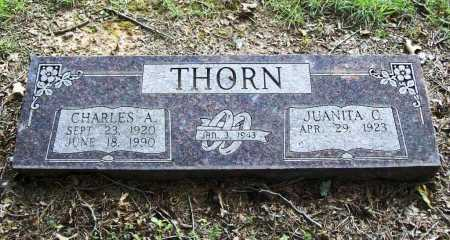 THORN, CHARLES A. - Benton County, Arkansas | CHARLES A. THORN - Arkansas Gravestone Photos
