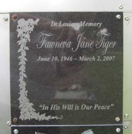 TIGER, FAWNEVA JANE - Benton County, Arkansas | FAWNEVA JANE TIGER - Arkansas Gravestone Photos