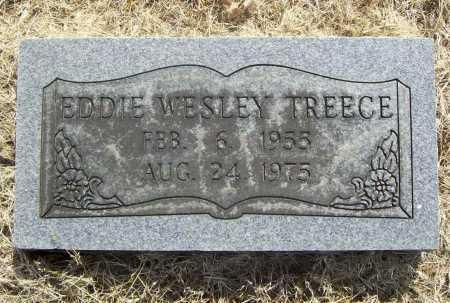 TREECE, EDDIE WESLEY - Benton County, Arkansas | EDDIE WESLEY TREECE - Arkansas Gravestone Photos
