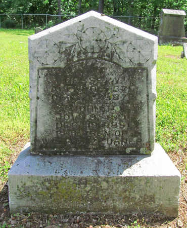TURNER, JESSE W - Benton County, Arkansas | JESSE W TURNER - Arkansas Gravestone Photos