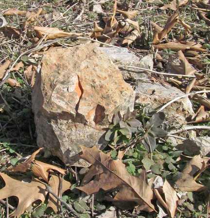 UNKNOWN,  - Benton County, Arkansas |  UNKNOWN - Arkansas Gravestone Photos