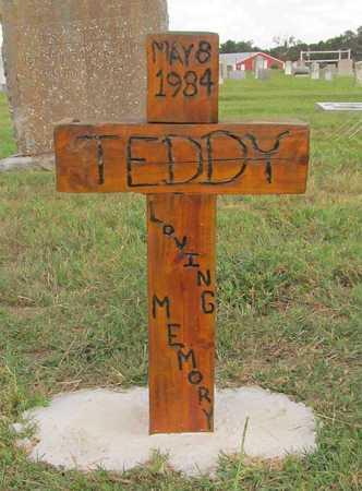 UNKNOWN, TEDDY - Benton County, Arkansas   TEDDY UNKNOWN - Arkansas Gravestone Photos