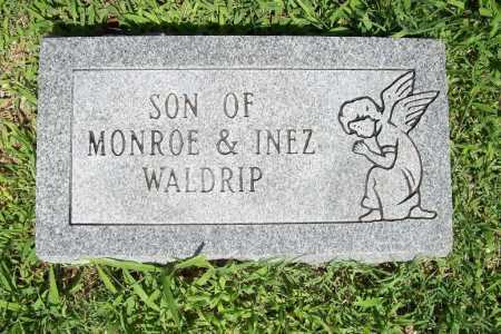 WALDRIP, INFANT SON - Benton County, Arkansas | INFANT SON WALDRIP - Arkansas Gravestone Photos