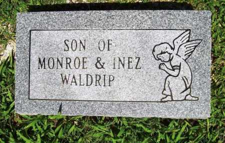 WALDRIP, INFANT SON - Benton County, Arkansas | INFANT SON WALDRIP - Arkansas Gravestone Photos