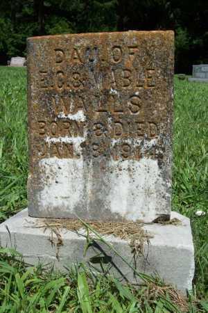 WALLS, DAUGHTER - Benton County, Arkansas | DAUGHTER WALLS - Arkansas Gravestone Photos