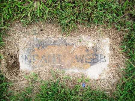 WEBB, INFANT - Benton County, Arkansas   INFANT WEBB - Arkansas Gravestone Photos